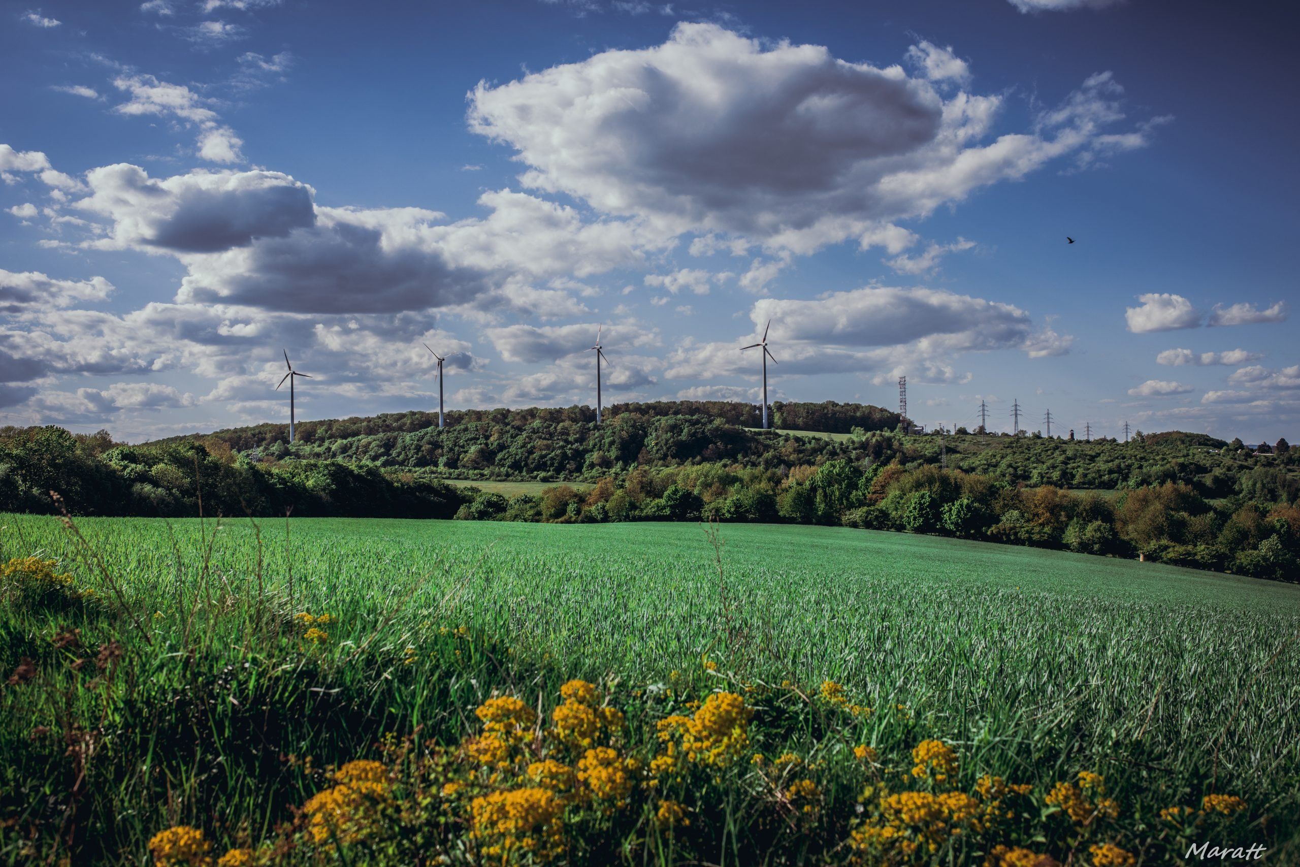 Prvá veterná elektráreň na Slovensku - veterná elektráreň Cerová v okrese Senica s inštalovaným výkonom 2,6 MW (Zdroj: obeccerova.sk)